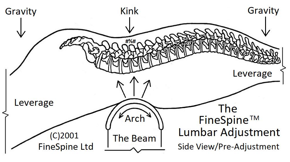 lumbar adjustment view